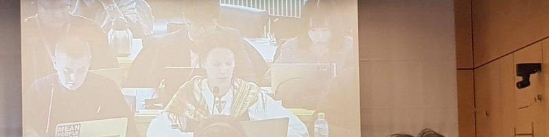 FNs rasediskrimineringskomités 97. sesjon