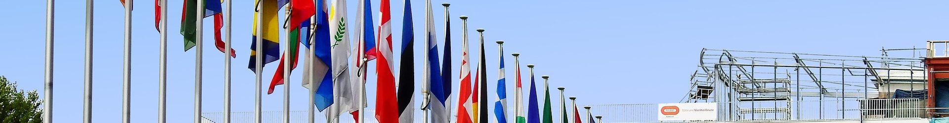 Forbundet avleverte skyggerapporten til Europarådet